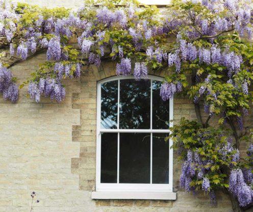 Sliding sash windows Weybridge